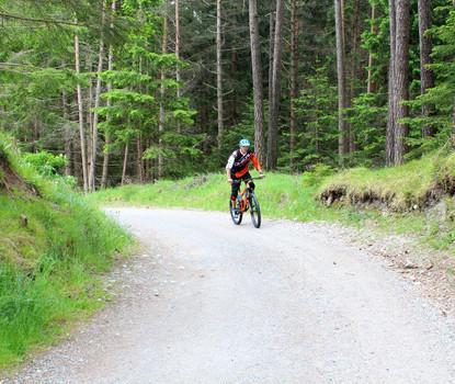 Gute Fahrt! Die Fahrrad-Servicestationen von Intersport Riml